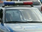 Нижегородские полицейские изъяли нарынке похищенную норковую шубу