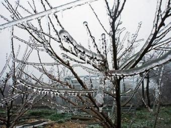 Сильный снегопад вРязани продолжится ивовторник