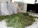 ВИжевске подростка задержали занезаконный сбыт наркотиков