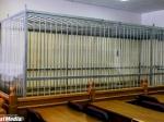 ВСвердловской области будут судить налетчиков ювелирного магазина вТавде, вкотором была убита продавец