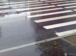 Под Волгоградом сотрудница «Лукойла» насмерть сбила пешехода