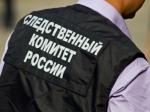 Принудительное лечение ожидает жителя Лыскова, застрелившего внетрезвом состоянии 7-летнего сына исоседку