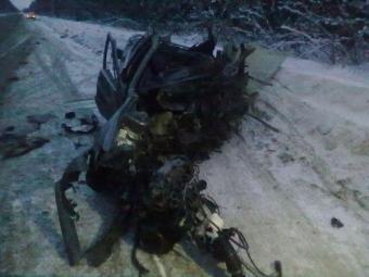 5 человек погибли вДТП сгрузовиком имикроавтобусом натрассе Петербург— Невель