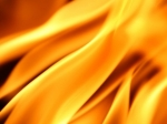 Впетербургском лесотехническом университете пройдут пожарные учения