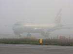 Аэропорт Краснодара из-за густого тумана непринимает рейсы