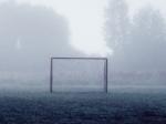 ВЮсуповском саду 9-летний мальчик запутался всетке футбольных ворот, ребенок— вреанимации