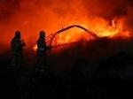 В Волгоградской области снова бушуют пожары