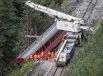 ВНидерландах пассажирский поезд столкнулся стоварным