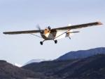 В Ленинградской области разбился частный самолет
