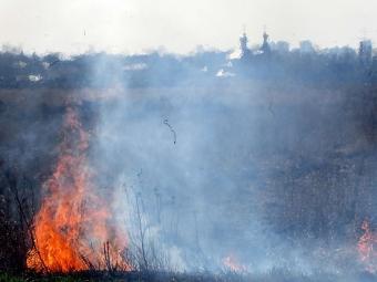 ВНовой Москве огонь подступил кжилым домам