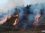 Лесные пожары вроссийском Забайкалье распространились натерриторию Китая