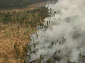 Площадь лесных пожаров вСибири засутки выросла почти вдвое— Рослесхоз