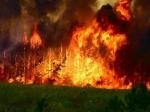 ВТыве введён режимЧС из-за лесных пожаров