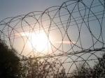 Втульской колонии застрелили преступника, захватившего заложников