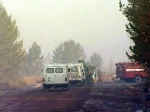 В Братске задержано более 60 подозреваемых в поджогах лесов