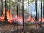 Пожароопасная обстановка в  России.