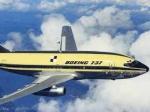 Boeing-737 не смог взлететь в Томске из-за отказа гидросистемы