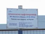 Общественная палата попросит губернатора Воробьева закрыть нелегальный рынок в Реутове