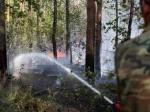 В Подмосковье горит лес и торфяники