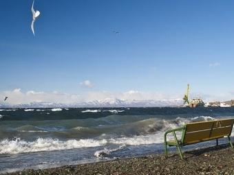 Землетрясение в Тихом океане не представляет серьёзной опасности
