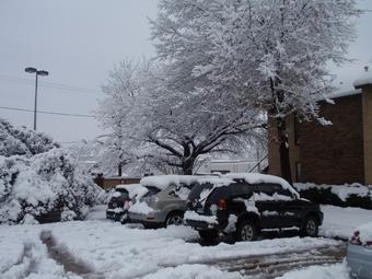 Техас накрыл мощный снегопад