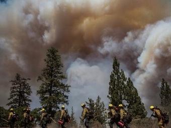 Лесные пожары в Калифорнии локализованы