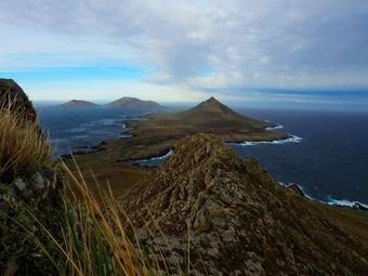 Сильнейшее за 40 лет землетрясение потрясло Фолклендские острова