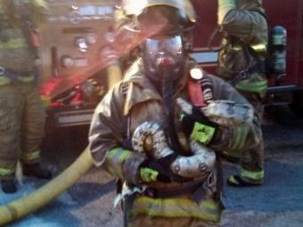 В США пожарный спас двухметрового питона