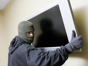 На любовном свидании вор украл телевизор и породистого терьера