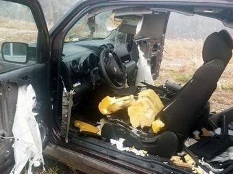 В серии взломов автомобилей полицейские винят медведей