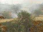 На Кипре взрывы. Туристы массово покидают страну