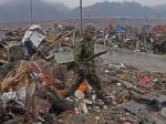 В Японии военные будут бороться с мухами