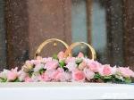 ВЯпонии сыграли первую вмире свадьбу роботов