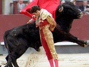 Последняя Испанская коррида