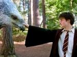 В Великобритании снимут сериал о Гарри Поттере