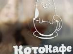 ВМоскве открылось котокафе «Котики илюди»