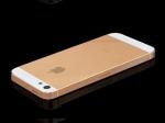 Аналитик: датчик отпечатка пальца в новом iPhone 5S может повысить цену на акции Apple